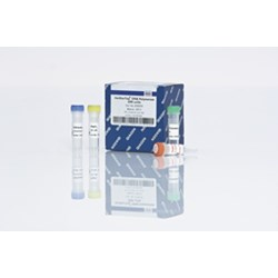 HotStarTaq DNA Polymerase (25000) by QIAGEN product image
