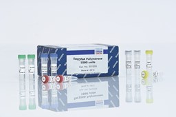 Taq DNA Polymerase Kit (25000 U) by QIAGEN product image