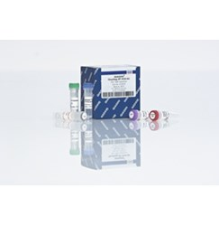 QIAGEN OneStep RT-PCR Kit (100)