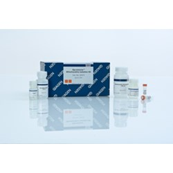 Qproteome Mitochondria Isolation Kit by QIAGEN product image