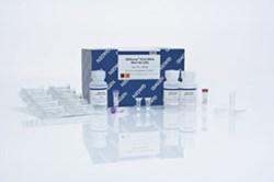 qiagen rna extraction kit pdf