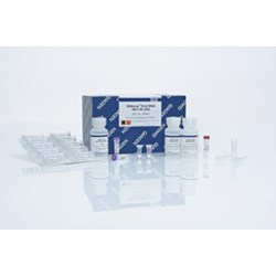 QIAamp Viral RNA Mini Kit (250) by QIAGEN product image