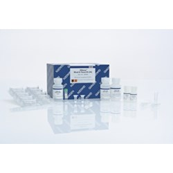 DNeasy Blood & Tissue Kit (250) by QIAGEN product image