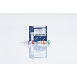 QuantiTect Rev. Transcription Kit (200) by QIAGEN product image