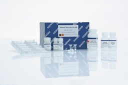 DNeasy Plant Mini Kit (250) by QIAGEN product image