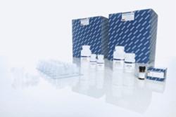 QIAamp DNA Mini QIAcube Kit (240) from QIAGEN | SelectScience