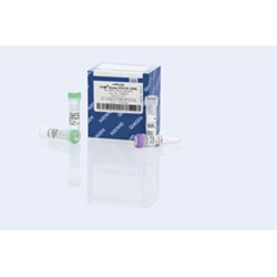 miScript SYBR Green PCR Kit (200) by QIAGEN product image