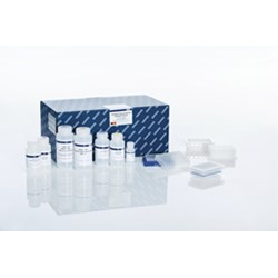 QIAGEN Plasmid Plus 96 Miniprep Kit (4) by QIAGEN product image