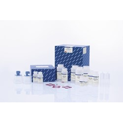 EndoFree Plasmid Giga Kit (5) by QIAGEN product image