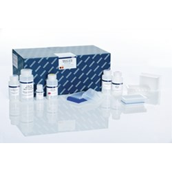 QIAprep 96 Plus Miniprep Kit (4) by QIAGEN product image