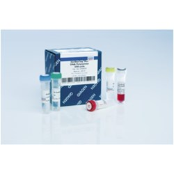 HotStarTaq Plus DNA Polymerase (250) by QIAGEN product image