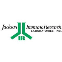 Whole IgG Affinity-Purified Secondary Antibodies by Jackson ImmunoResearch Laboratories Inc. product image