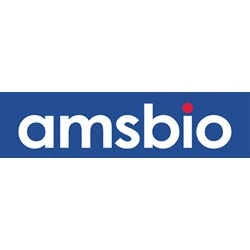BioPORTER Protein Delivery Reagent (96 Reactions) by AMSBIO product image
