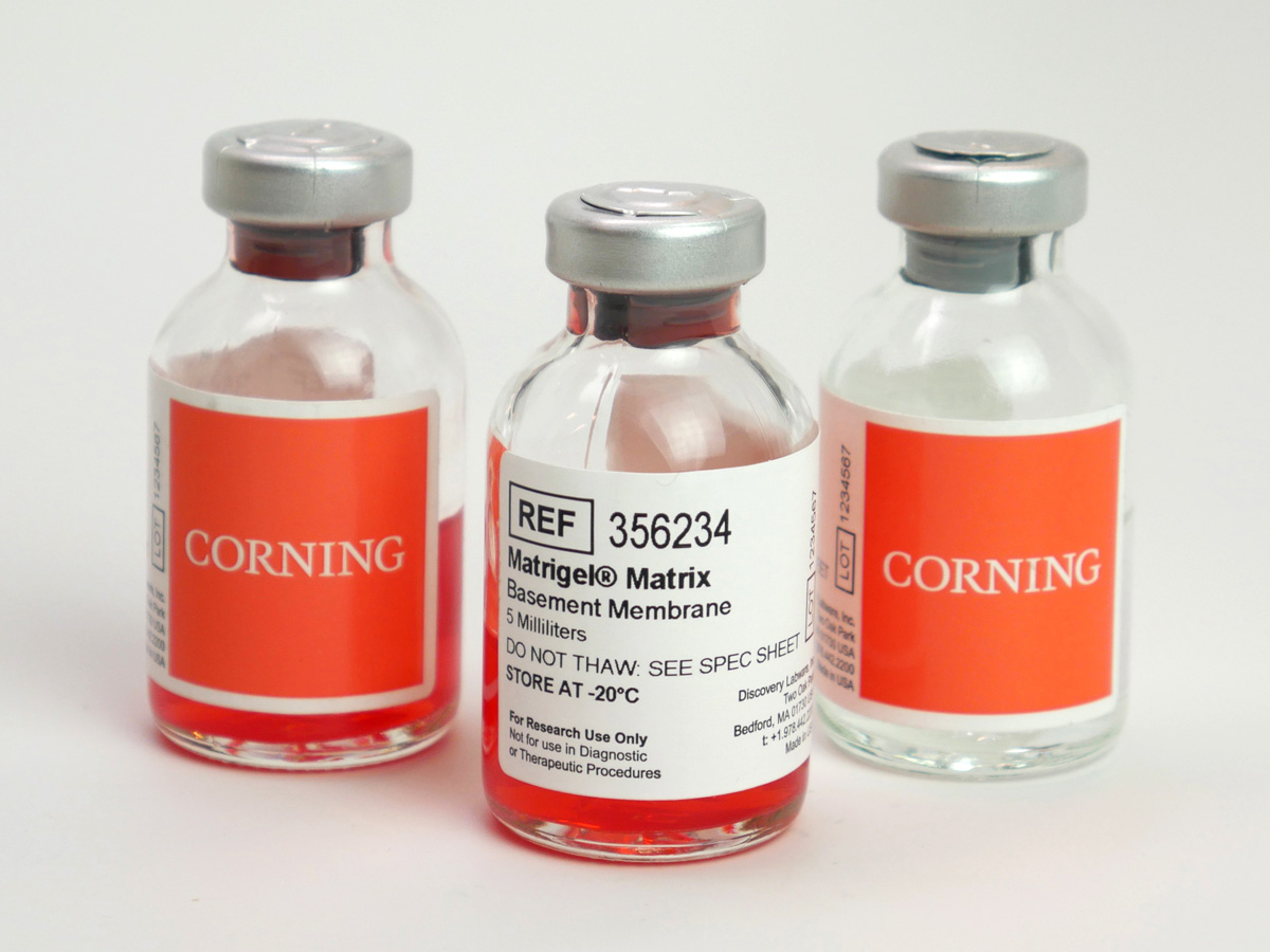 Corning® Matrigel® hESC-Qualified Matrix, LDEV-free, 5 mL by Corning Life Sciences thumbnail