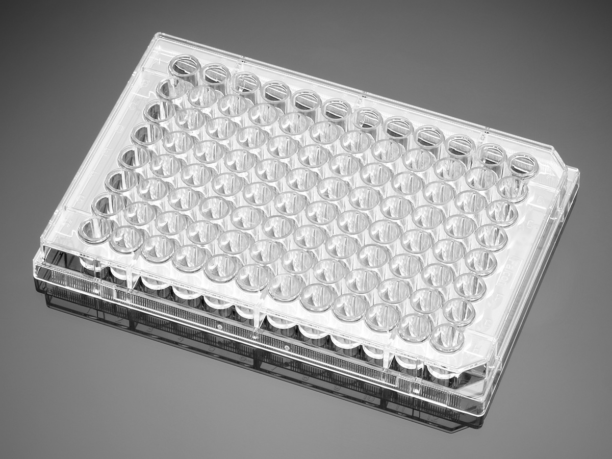 Falcon® 96-well Clear Round Bottom Not Treated Assay Microplate, Nonsterile, without Lids 5/Pack, 50/Case by Corning Life Sciences thumbnail