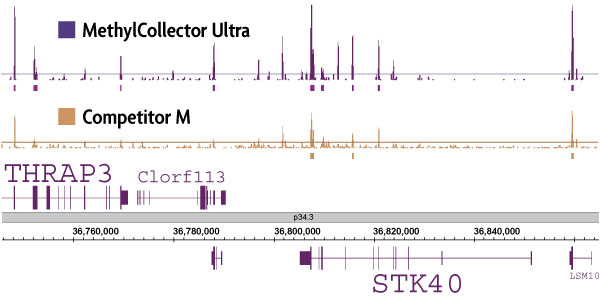 MethylCollector™ Ultra-Seq (MIRA-Seq) Service by Active Motif thumbnail