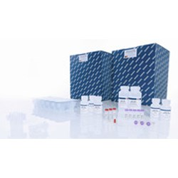 QIAamp Viral RNA Mini QIAcube Kit (240) by QIAGEN product image