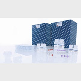 Qiaamp Viral Rna Mini Qiacube Kit 240 From Qiagen Selectscience