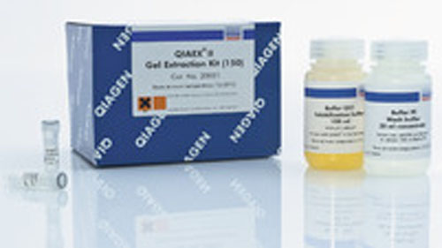 QIAEX II Gel Extraction Kit (500) by QIAGEN thumbnail