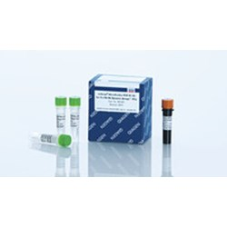 miScript Microfluidics PCR Kit (5) by QIAGEN product image