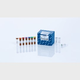 QIAamp DSP DNA FFPE Tissue Kit (50) by QIAGEN product image