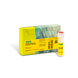 StarBright™ Blue 700 Fluorescent Secondary Antibodies by Bio-Rad product thumbnail