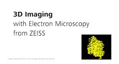 zeiss-3d-electron-microscopy-for-life-sciences