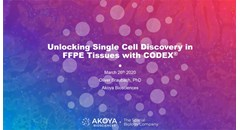 Unlocking single cell discovery in FFPE tissues with CODEX