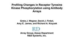 Profiling changes in receptor tyrosine kinase phosphorylation using antibody arrays