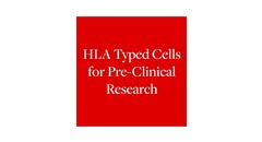 HLA typed cells for pre-clinical research