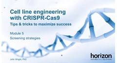 Cell line engineering with CRISPR-Cas9: Screening strategies