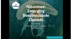 Nitazenes: Emerging benzimidazole opioids