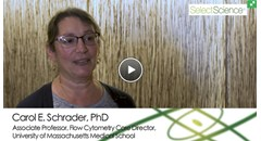 Studying B cell immunology with the latest flow cytometry technology