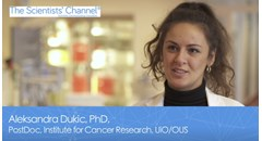 Life Sciences Video of the Year: A novel target to inhibit glioblastoma invasion