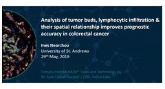 Improved prognostic accuracy in colorectal cancer