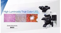 High Luminosity True Color LED