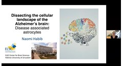 Dissecting the cellular landscape of the Alzheimer's brain: Disease-associated astrocytes