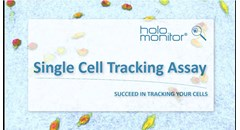 Automatic single-cell tracking assay