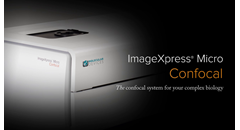 introducing-the-imagexpress-micro-confocal-high-content-imaging-system