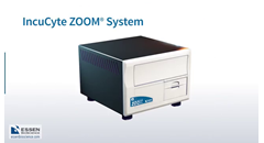 continuous-live-cell-imaging-with-the-incucyte-zoom
