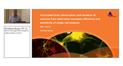 Automated Brain Dissociation and Isolation of Neurons for Efficient Single Cell Analysis